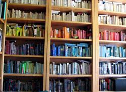 bookshelf-mini